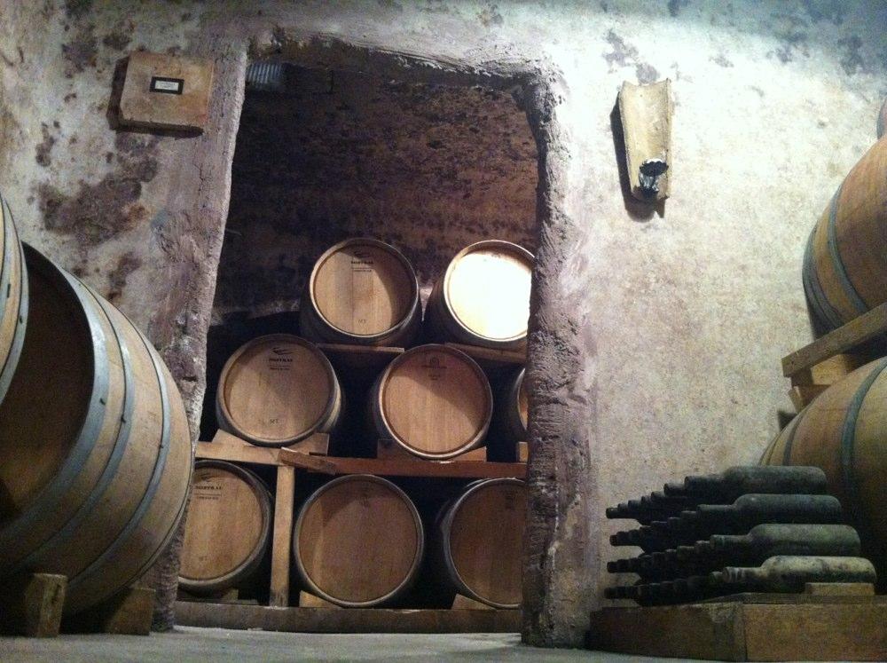 wine_barrels_puglia