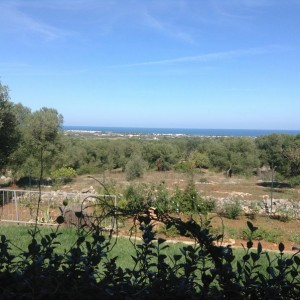 Sea views villa for sale in Carovigno
