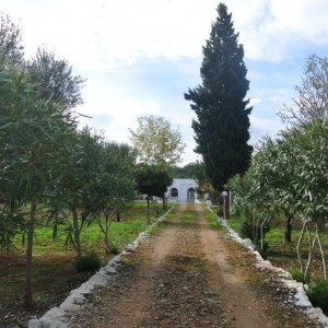 Villa and lamia for sale in Ostuni