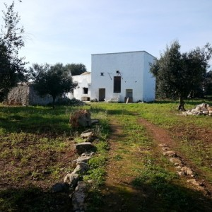 Lamia and trulli for sale in Ostuni