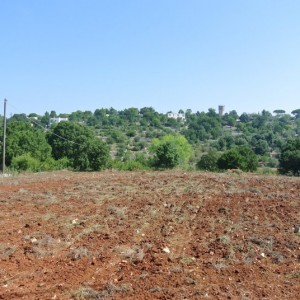 Land with project approved for sale in Locorotondo