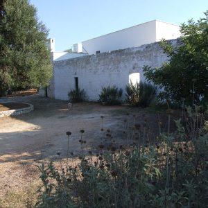 Masseria for sale Ostuni - Puglia