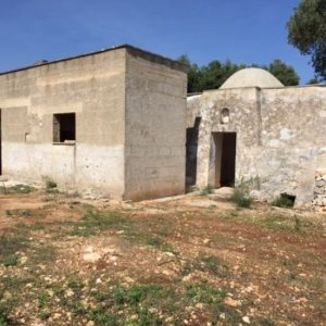 Trullo for sale in Carovigno