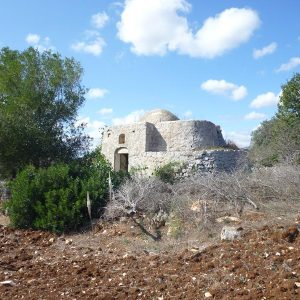 Trullo for sale in Carovigno - Puglia